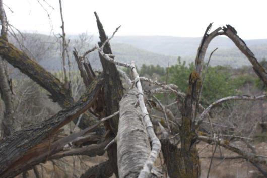 הר איתן 13.10.2011 055