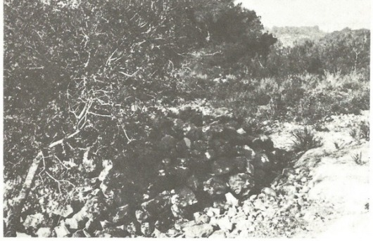 גלעד שהקים בן-אלקנה במקום קבורת הגופות (ע' 157)