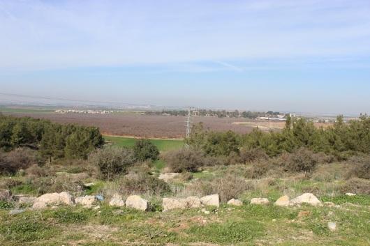 מבט אל כפר מנחם. ממנו יצאו לוחמי גבעתי לכבוש את תל א-צאפי. ובשמו החדש - תל צפית...